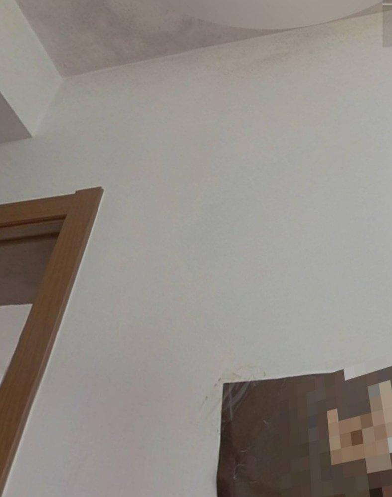 房顶发霉,没看到明显漏水,能否维修?