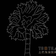 植物,树木图块素材10-10个