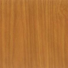 梧桐木材质图片