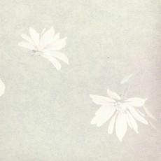 花纹壁纸素材图片