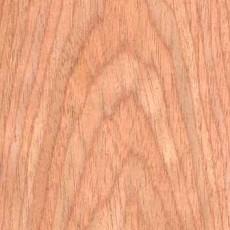 橡木类:红橡壹材质图片
