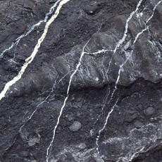 化石贴图材质素材图片零玖壹