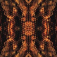 蛇紋圖片材質-蛇紋素材貼圖【1026】
