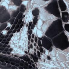 蛇紋圖片材質-蛇紋素材貼圖【1024】