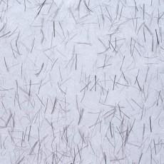 纸纹材质图片【1502】