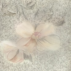 花紋的壁紙素材圖片-叁柒