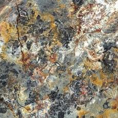 化石贴图材质素材图片【763】