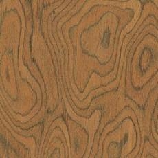 树根类:柚木树根材质图片