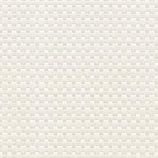 韩国壁纸素材图片-柠檬树壁纸贴图之捌零