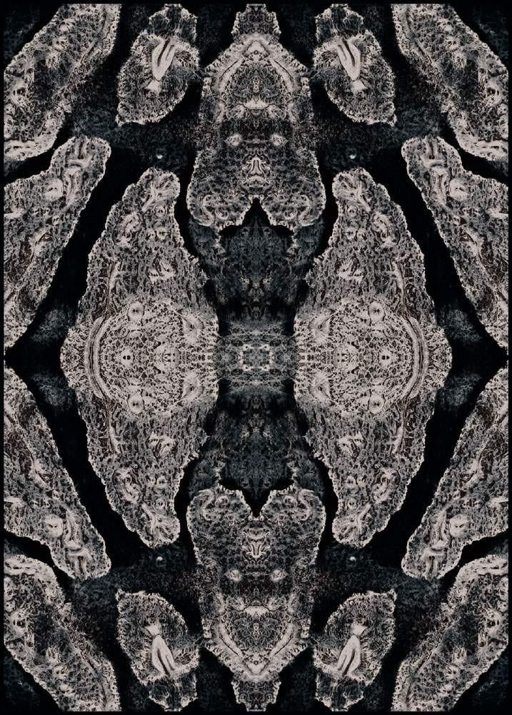 蛇纹图片材质-蛇纹素材贴图叁叁