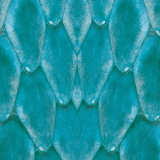蛇紋圖片材質-蛇紋素材貼圖【886】