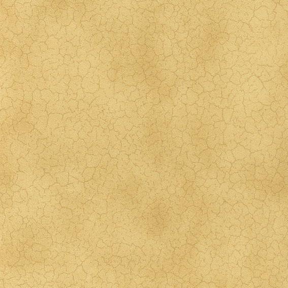 金箔壁纸材质贴图