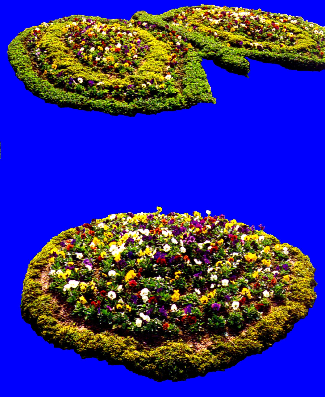 花坛素材材质图片零玖壹