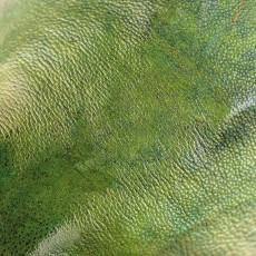 蛇紋圖片材質-蛇紋素材貼圖【1043】
