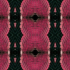 蛇紋圖片材質-蛇紋素材貼圖【889】