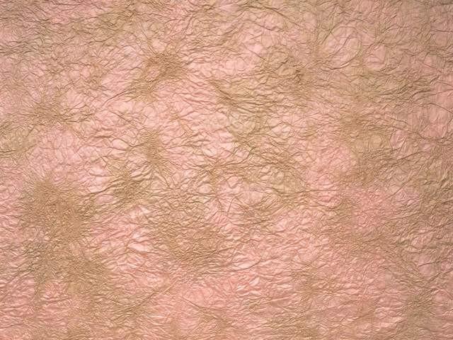 纸纹材质图片【1505】3dmax材质