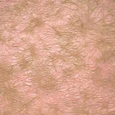 纸纹材质图片【1505】