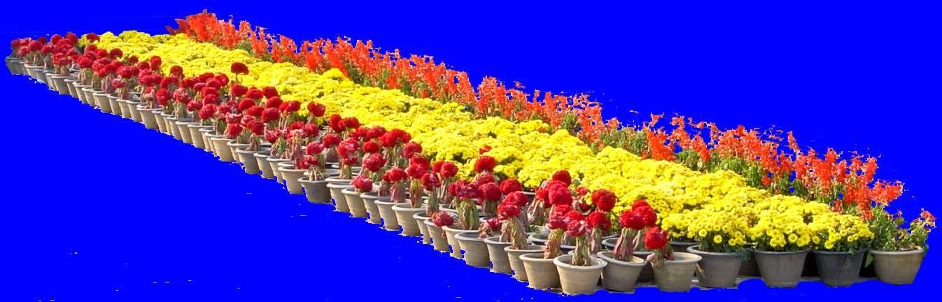 花坛素材材质图片零贰壹3dmax材质