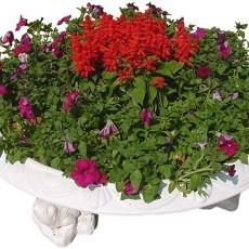 花坛素材材质图片零零陆