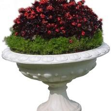 花坛贴图材质图片零玖玖
