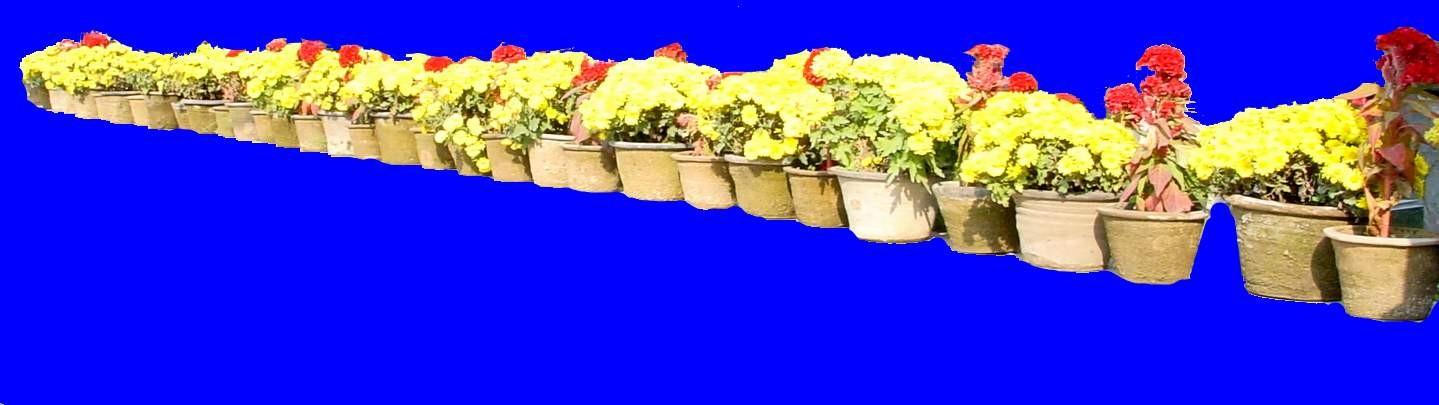 花坛素材材质图片零贰伍3dmax材质