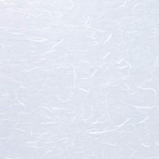 纸纹材质图片【1499】