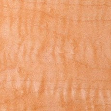 木材木材质贴图