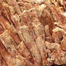 化石贴图材质素材图片【792】