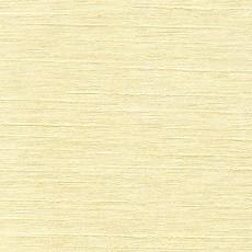 韩国壁纸素材图片-柠檬树壁纸贴图之壹零壹
