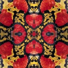 蛇紋圖片材質-蛇紋素材貼圖【1030】