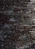树皮图片玖