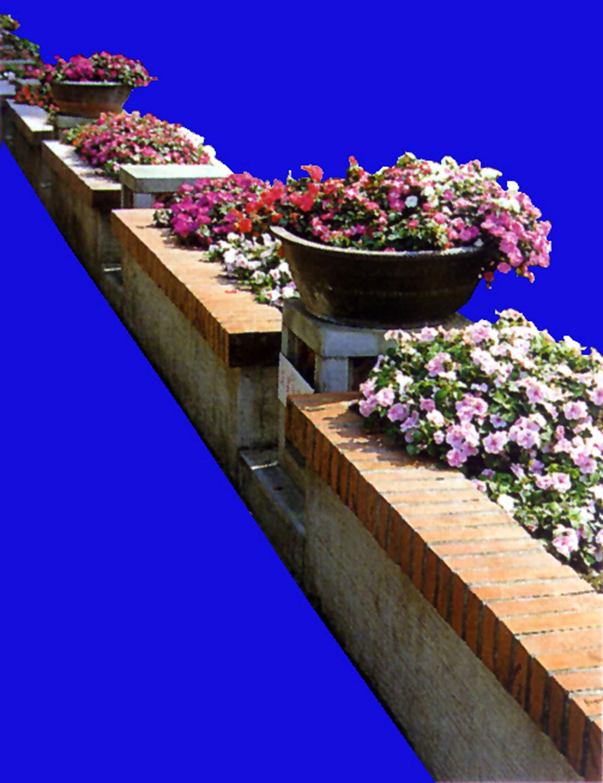 花坛素材材质图片零玖零