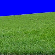 草皮贴图图片材质零捌叁