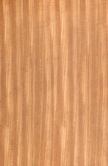 柚木类:柚木皇壹材质图片