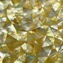 黄蝶贝三角形乱拼