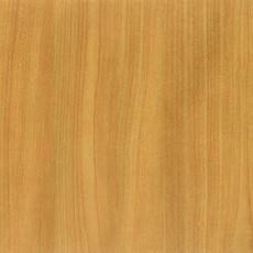 枫木材质贴图
