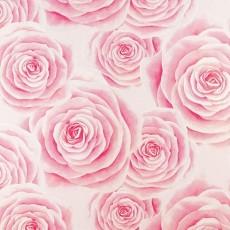 温馨壁纸(粉色)