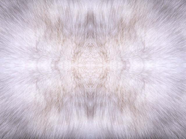 毛地毯贴图_毛地毯材质贴图下载