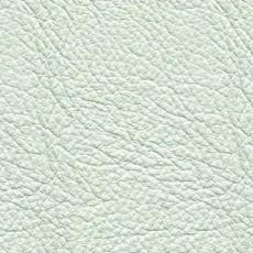 白色皮革贴图