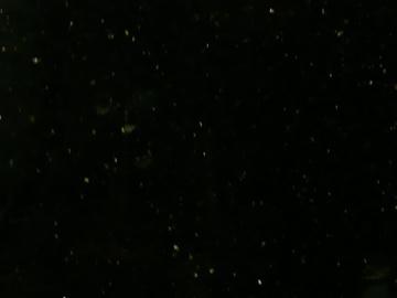 黑色踢脚线材质贴图