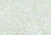 灰色地砖贴图34