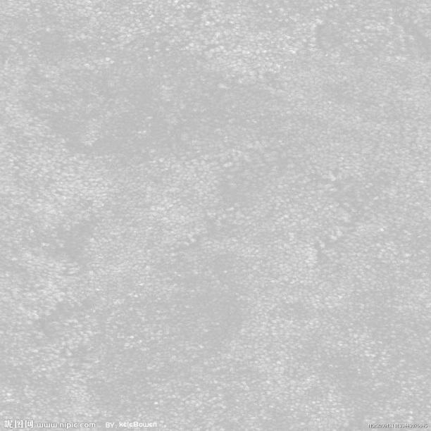 白色地毯贴图_白色地毯材质贴图免费下载
