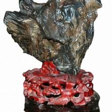 木化石图片2