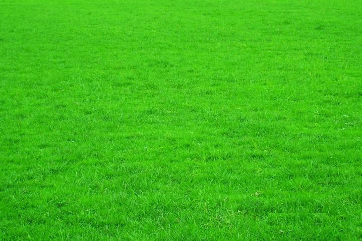 草坪贴图_草坪材质贴图