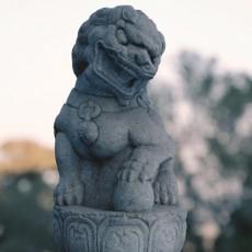 石獅子圖片_圖片大全