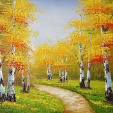 白桦树图片_白桦树图片下载
