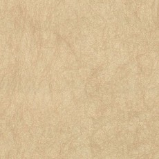 欧式金色墙纸材质贴图下载