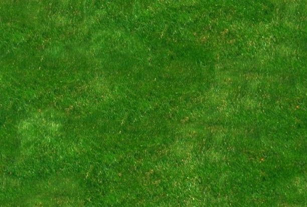 草坪3dmax材质