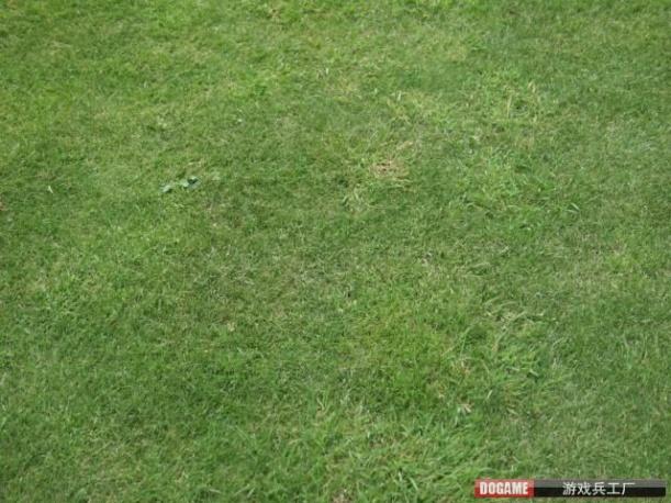 草坪贴图【22979】