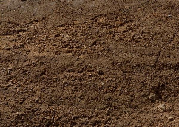 泥土3dmax材质